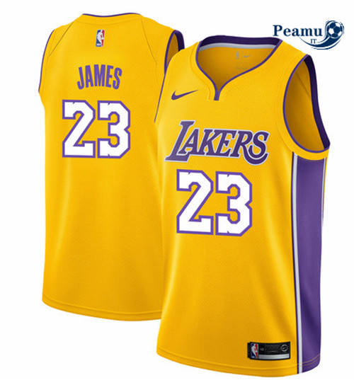 Peamu - LeBron James, Los Angeles Lakers - Icon
