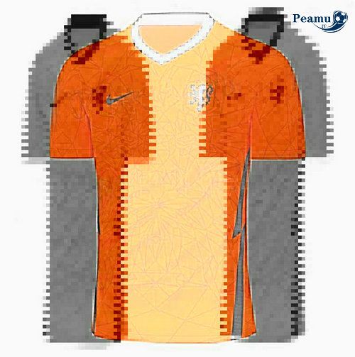 Maillot foot Pays-Bas Domicile Euro 2020-2021
